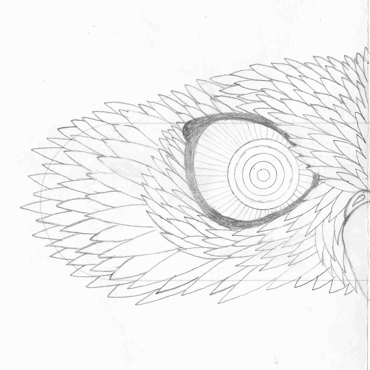 freakart_lv_victorinox_ilustracija_dizains_produkts_05